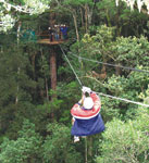 Storms River Canopy Tours