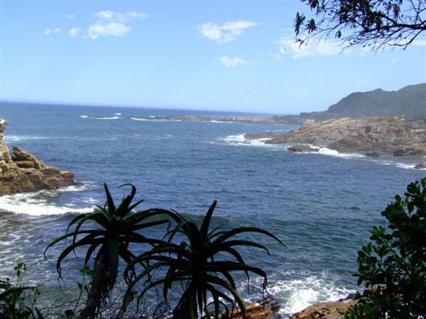 storms_river_otter_trail